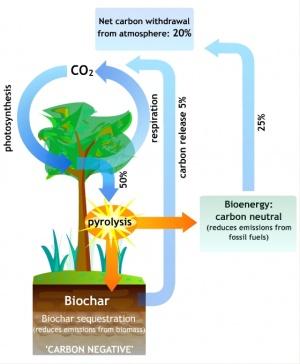 Biochar cycle2